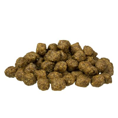 bosch mini adult poultry millet dry dog food free p p 29