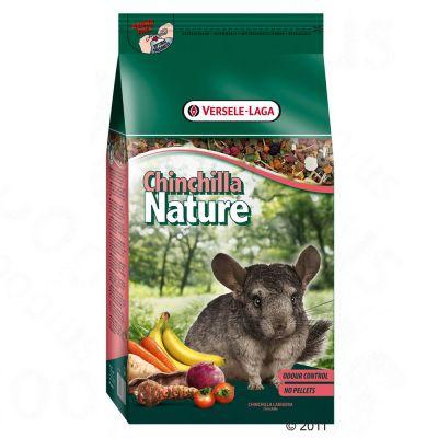Chinchilla Nature