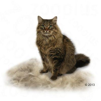 non-clumping cat litter