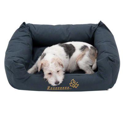 hundebett sleepy time grey mit kissen g nstig bei zooplus. Black Bedroom Furniture Sets. Home Design Ideas