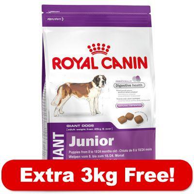 15kg royal canin size 3kg free free p amp p 29