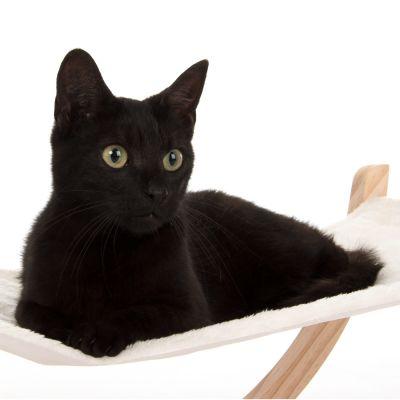 natural paradise hamac pour chat zooplus. Black Bedroom Furniture Sets. Home Design Ideas