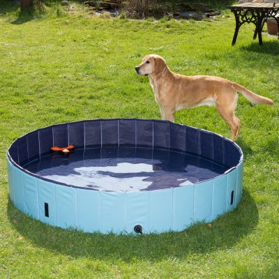 Dog Pool Keep Cool Piscine Pour Chien Zooplus
