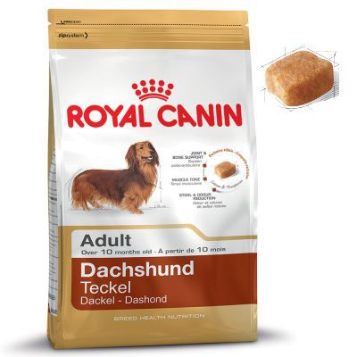 royal canin dachshund adult free p p on orders 29 at zooplus. Black Bedroom Furniture Sets. Home Design Ideas