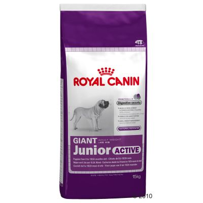 royal canin giant junior active great deals at zooplus. Black Bedroom Furniture Sets. Home Design Ideas