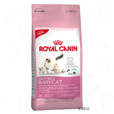 Royal Canin Mother And Baby Cat Review