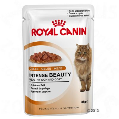 Royal Canin Wet Cat Food Saver Pack 48 X 85g Free P Amp P 163 29