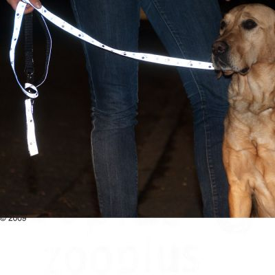 Trixie Reflective Paws Dog Lead - Silver
