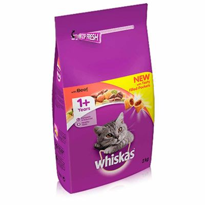 Best Food For Overweight Cat Uk
