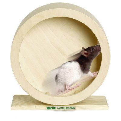 Wonderland Wooden Exercise Wheel